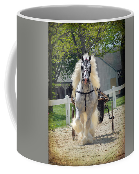 Horses Coffee Mug featuring the photograph Dunbrody Drive by Fran J Scott