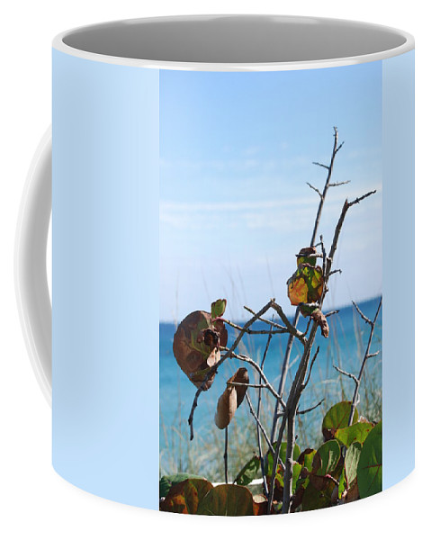 Ocean Coffee Mug featuring the photograph Dune Plants by Rob Hans