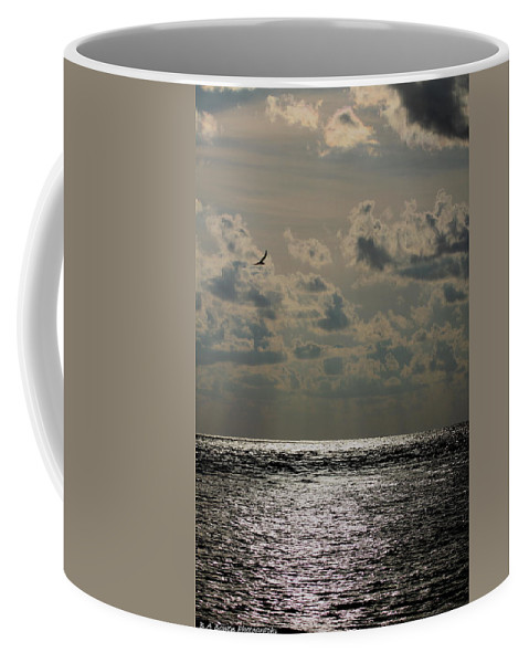 Sunset Coffee Mug featuring the photograph Dusk Sets In by Barbara Bowen