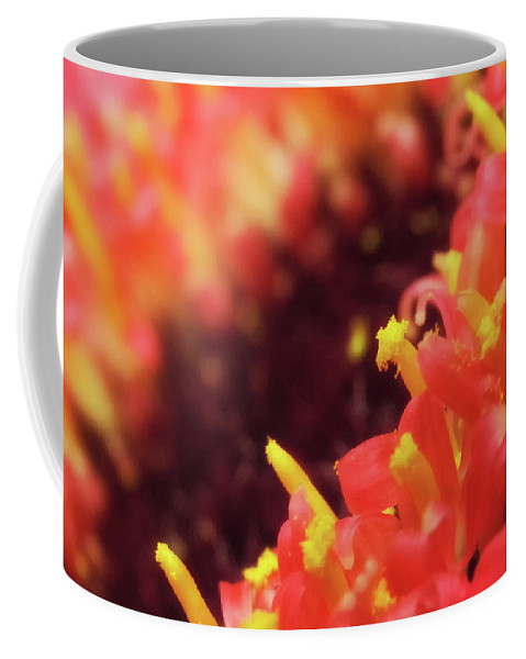 Colorful Coffee Mug featuring the photograph Dusted by Marnie Patchett