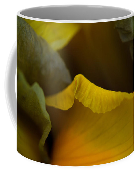 Dutch Iris Coffee Mug featuring the photograph Dutch Iris Bronze Beauty 2 by Sarah Greenwell