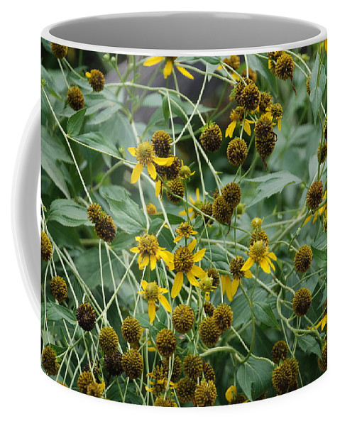 Macro Coffee Mug featuring the photograph Dying Sun Flowers by Rob Hans