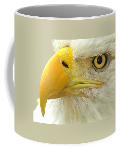 Eagle Coffee Mug featuring the photograph Eagle Eye by Shane Bechler