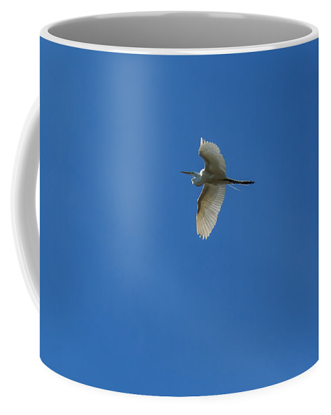 Florida Coffee Mug featuring the photograph Eagle Lakes Park - Great Egret In Flight by Ronald Reid