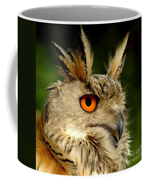 Wildlife Coffee Mug featuring the photograph Eagle Owl by Jacky Gerritsen