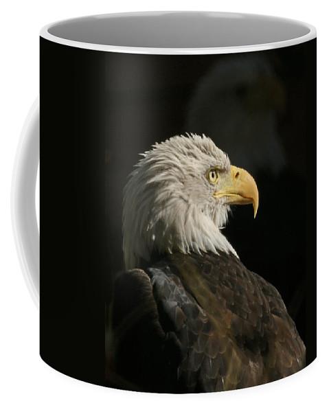 Animal Coffee Mug featuring the photograph Eagle Profile 1 Original Photo by Ernie Echols