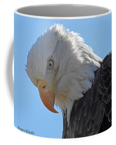 Bald Eagle Coffee Mug featuring the photograph Eagle Stare by Regine Brindle