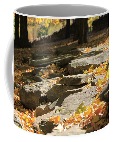 Autumn Coffee Mug featuring the photograph Early Autumn by Andrea Lynch