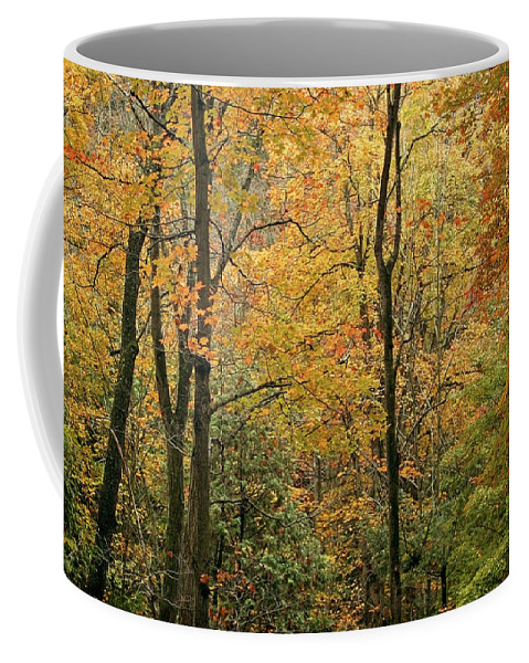 Tree Coffee Mug featuring the photograph Early Autumn by Phill Doherty