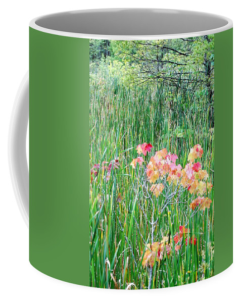 Digital Photograph Coffee Mug featuring the photograph Early Fall Color by David Lane