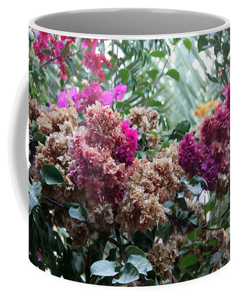 Flower Coffee Mug featuring the photograph Early Morning by Munir Alawi