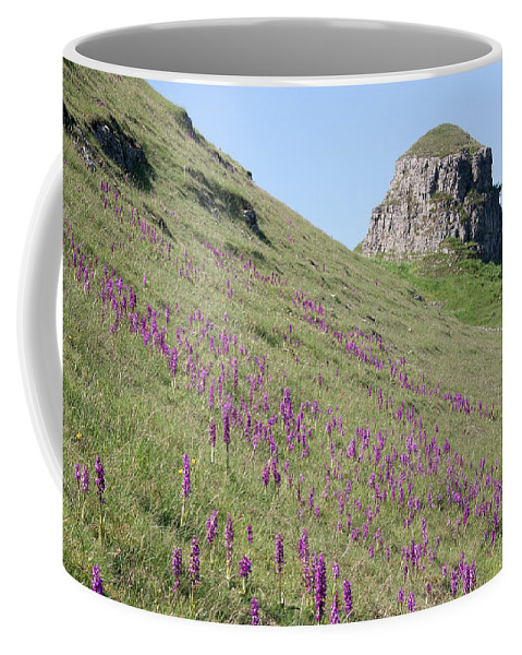 Early Puple Orchids Coffee Mug featuring the photograph Early Purple Orchids In The Derbyshire Dales by Bob Kemp