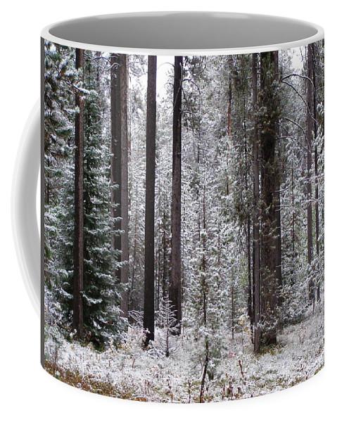 Snow Coffee Mug featuring the photograph Early Winter by DeeLon Merritt