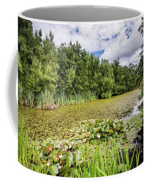 Northumberland Coffee Mug featuring the photograph East Cramlington Nature Reserve by David Head