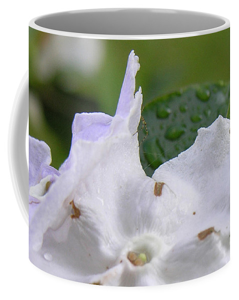 Flower Coffee Mug featuring the photograph Easter Surprise by Richard Rizzo