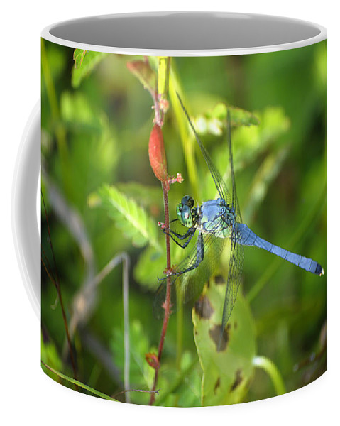 Dragonfly Coffee Mug featuring the photograph Eastern Pondhawk Dragonfly by Kenneth Albin