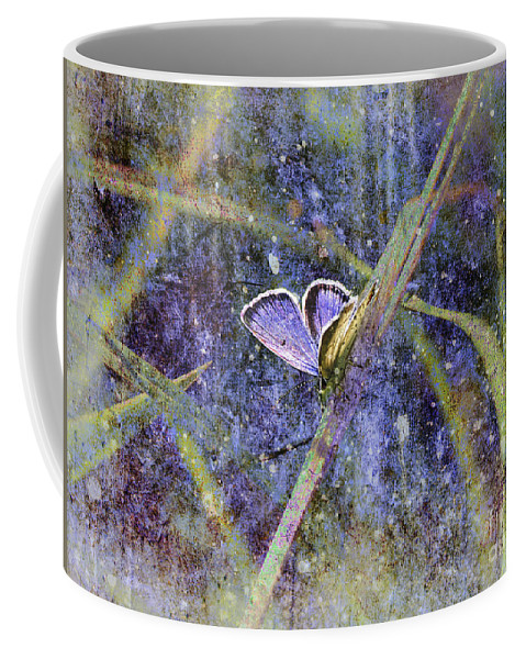Butterfly Coffee Mug featuring the photograph Eastern Tailed Blue by Sari Sauls