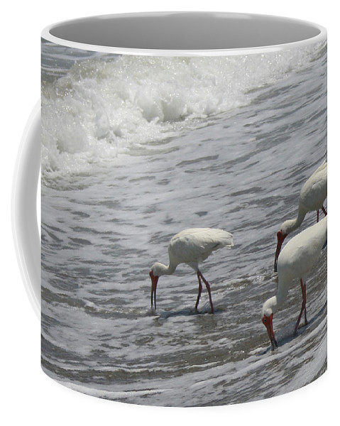 Ibis Coffee Mug featuring the photograph Eating by Susan Clay