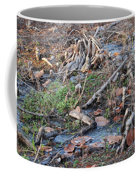 River Coffee Mug featuring the photograph Ebb And Flow by Rob Hans