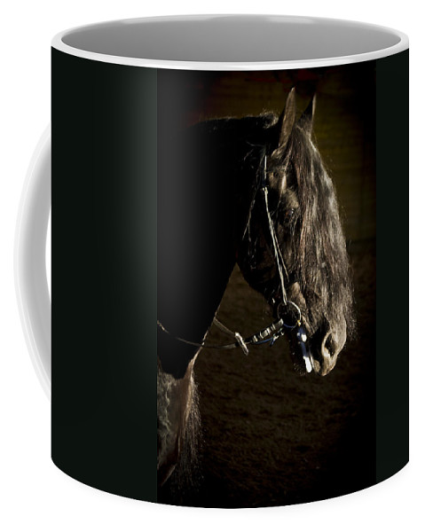 Ebony Coffee Mug featuring the photograph Ebony Beauty by Wes and Dotty Weber