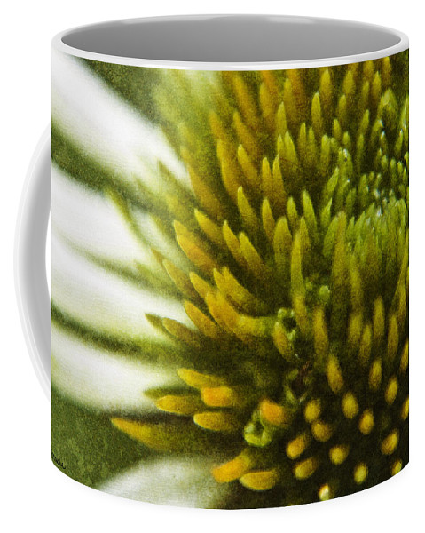 Echinacea Coffee Mug featuring the digital art Echinacea by Teresa Mucha