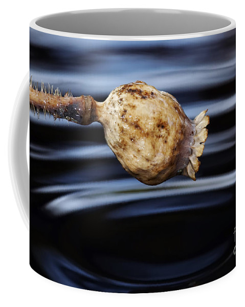 Resonance Coffee Mug featuring the photograph Echoes by Michal Boubin