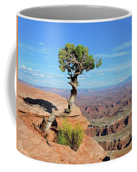 Canyonlands Coffee Mug featuring the photograph Edge Of The Cliff by Connor Beekman