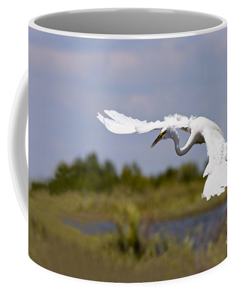 Egret Coffee Mug featuring the photograph Egret Ballet by Mike Dawson