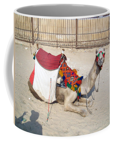 Egypt Coffee Mug featuring the photograph Egypt - Camel by Munir Alawi