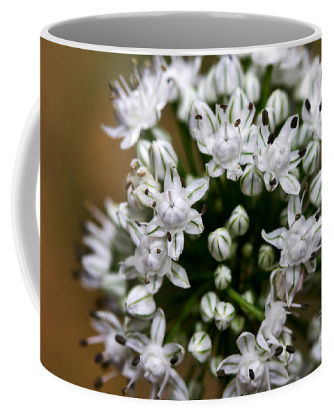 Flower Coffee Mug featuring the photograph Egyptian Onion by Louise Heusinkveld