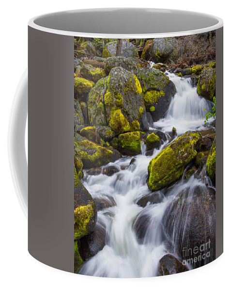 Yosemite Coffee Mug featuring the photograph Electric Green by Anthony Michael Bonafede