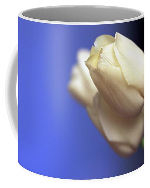Tulip Coffee Mug featuring the photograph Elegance by Evelina Kremsdorf