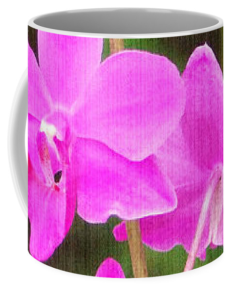 Orchid Coffee Mug featuring the photograph Elegance In Nature by Sue Melvin