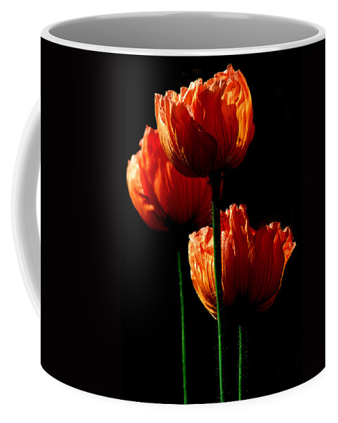 Photograph Coffee Mug featuring the photograph Elegance by Stephie Butler