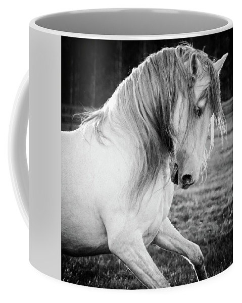 Alicegipsonphotographs Coffee Mug featuring the photograph Elegante by Alice Gipson