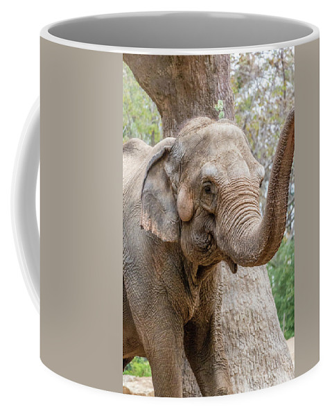 Elephant Coffee Mug featuring the photograph Elephant And Tree Trunk by Steven Jones