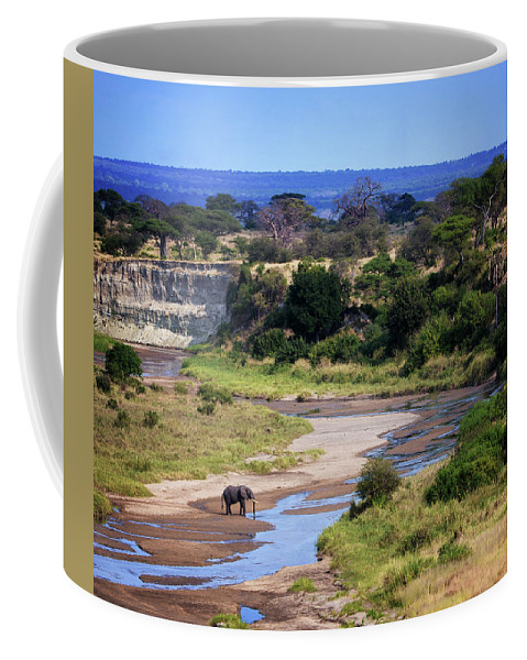 Crossing Coffee Mug featuring the photograph Elephant Crossing In Tarangire by Vicki Jauron