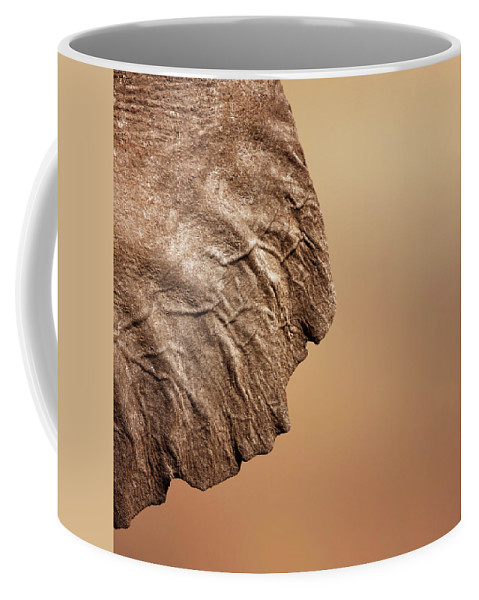 Texture Coffee Mug featuring the photograph Elephant Ear Close-up by Johan Swanepoel