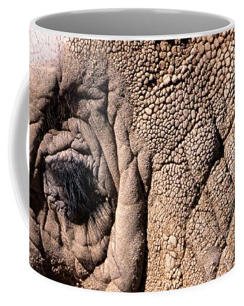 Animal Coffee Mug featuring the photograph Elephant Eye Closeup by John Harmon
