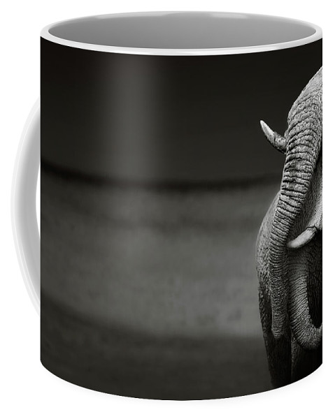 Elephant; Interaction; Touch; Trunk; Communicate; Head; Two; Behavior; Africa; Black; White; Monochrome; Art; Artistic; Loxodonta; Africana; Compassion; Affection; Animal; Mammal; Desert; Etosha; Nobody; Safari; Togetherness; Together; Wild; Wilderness; Wildlife Coffee Mug featuring the photograph Elephants interacting by Johan Swanepoel