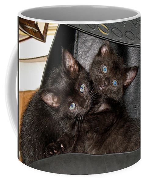 Cats Coffee Mug featuring the photograph Ellen And Elvira by Kenneth Albin
