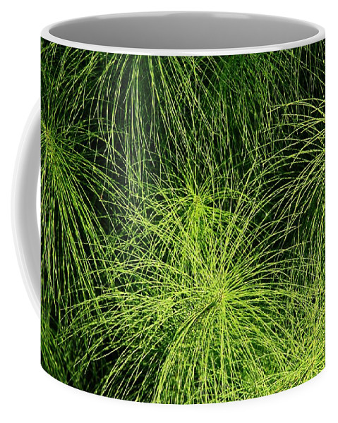 Green Coffee Mug featuring the photograph Emerald Explosion by Winston Rockwell