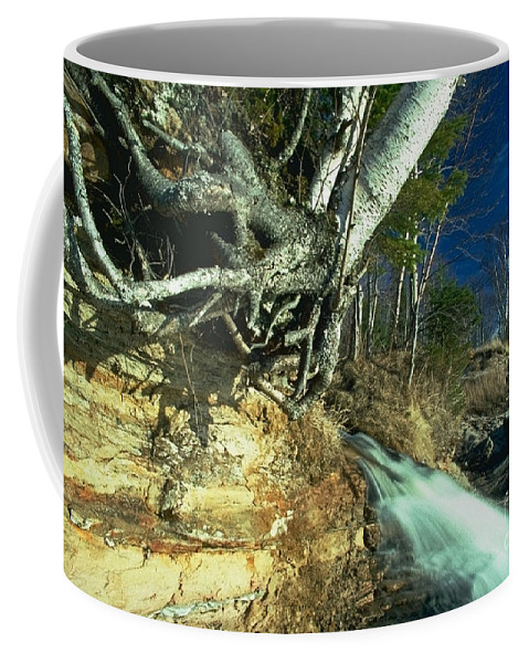 River Coffee Mug featuring the photograph Empties Into Lake Superior by Sven Brogren