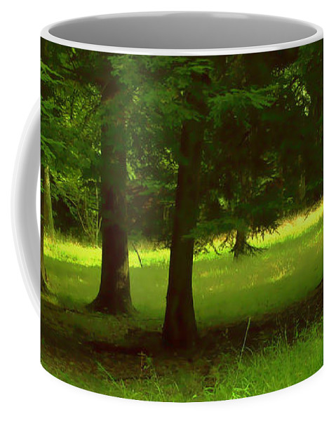 Nature Coffee Mug featuring the photograph Enchanted Forest by Linda Sannuti