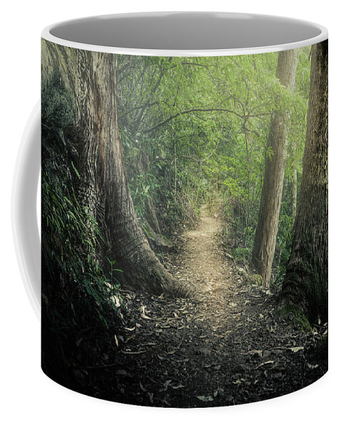 Trees Coffee Mug featuring the photograph Enchanted Forrest by Cameron Richardson