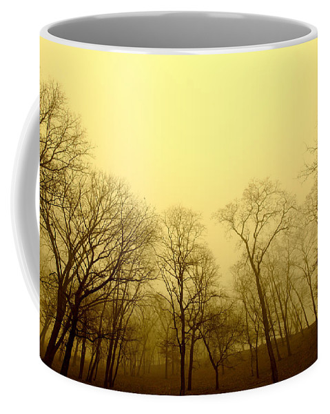 Trees Coffee Mug featuring the photograph Enchanted Stand by Todd Klassy