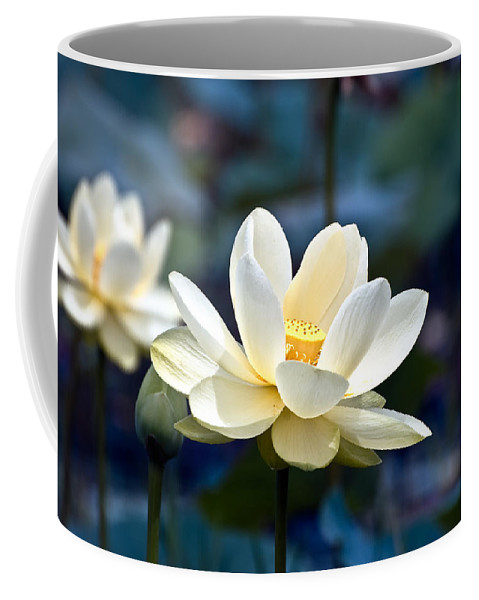 Lotus Coffee Mug featuring the photograph Enchanting Lotus by Rich Leighton