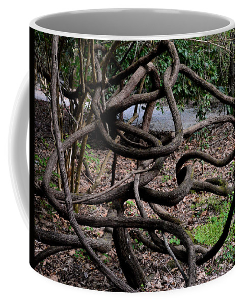 Nature Coffee Mug featuring the photograph Entanglement by Erin O'Neal-Morie