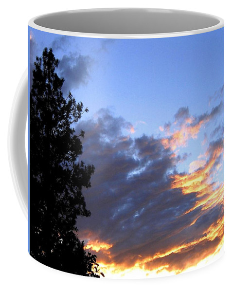 Sunset Coffee Mug featuring the photograph Evening Color by Will Borden
