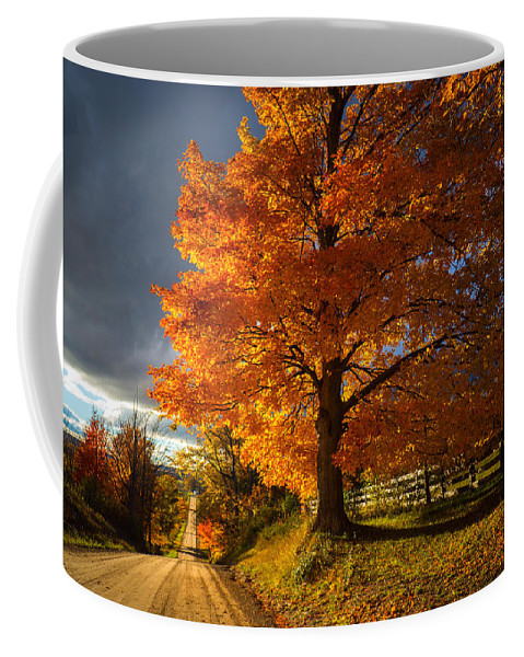Tree Coffee Mug featuring the photograph Evening Drive by LuAnn Griffin